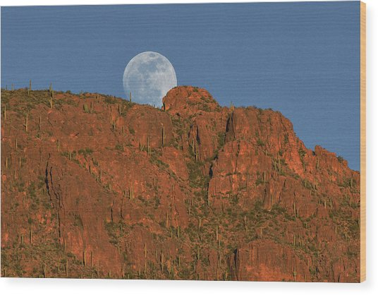 Moonrise Over The Tucson Mountains Wood Print