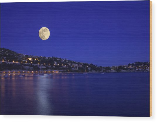 Moonshine Over Tranquil Sea Wood Print