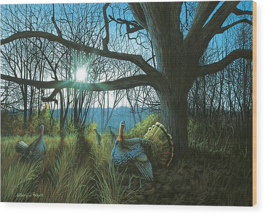 Morning Chat - Turkey Wood Print