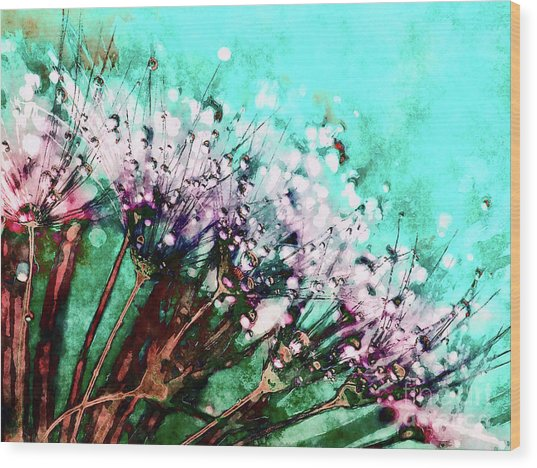 Morning Dew On Dandelions Wood Print