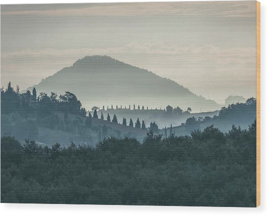 Morning Hills Of Toscany Wood Print