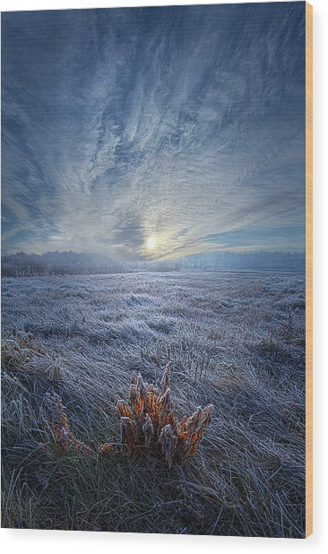 Wood Print featuring the photograph Morning Time Blues by Phil Koch