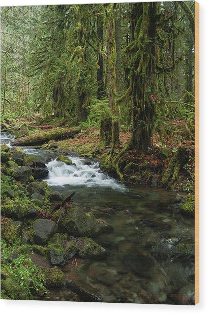 Mossy Cascade Wood Print