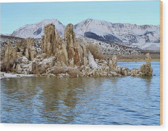 Mount Dana At Dawn  Mono Lake Wood Print