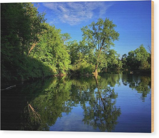 Wood Print featuring the photograph Mount Vernon Iowa by Dan Miller