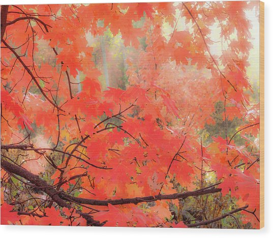 Mountain Maple Color Wood Print by Leland D Howard