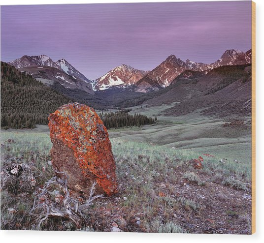 Mountain Textures And Light Wood Print by Leland D Howard