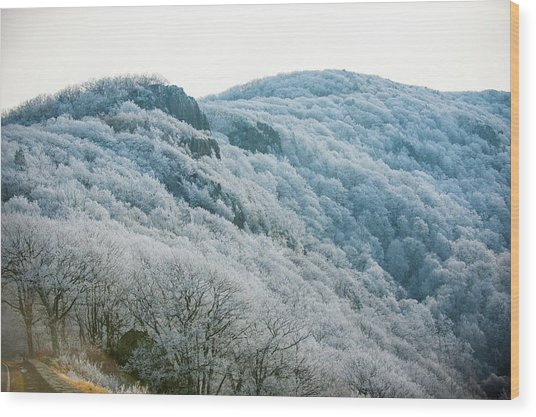 Mountainside Hoarfrost Wood Print