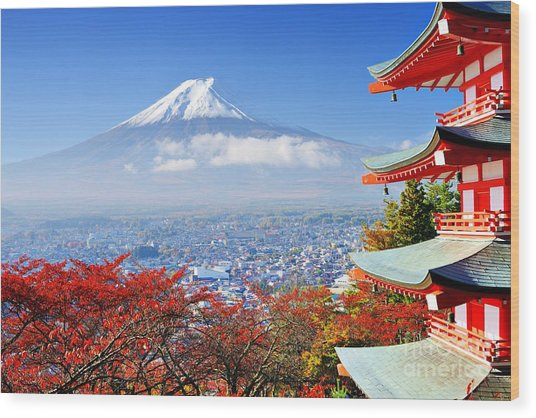 Mt. Fuji With Fall Colors In Japan Wood Print