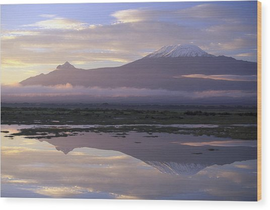 Mt.kilimanjaro Sunrise Amboseli Kenya Wood Print by Stan Osolinski