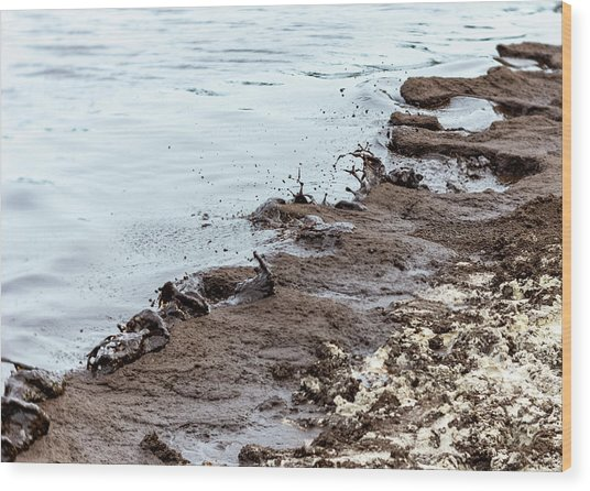 Muddy Sea Shore Wood Print