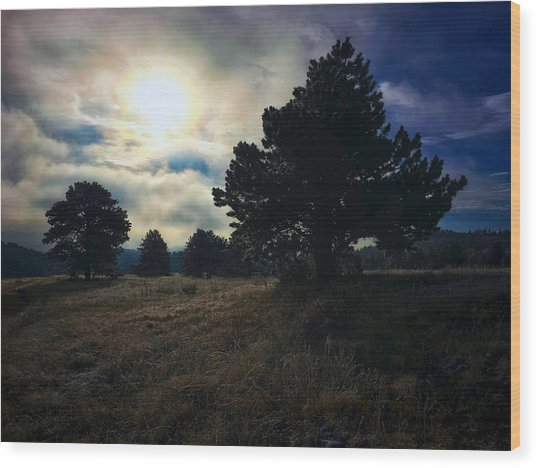 Wood Print featuring the photograph Murky Atmosphere Elk Meadow by Dan Miller