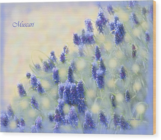 Muscari Morning Wood Print
