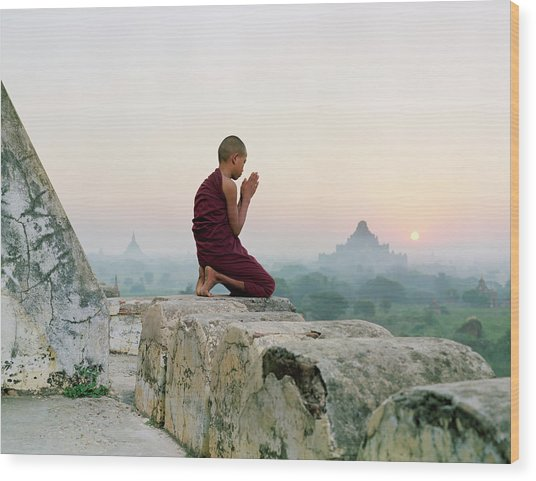 Myanmar, Bagan, Buddhist Monk Praying Wood Print by Martin Puddy