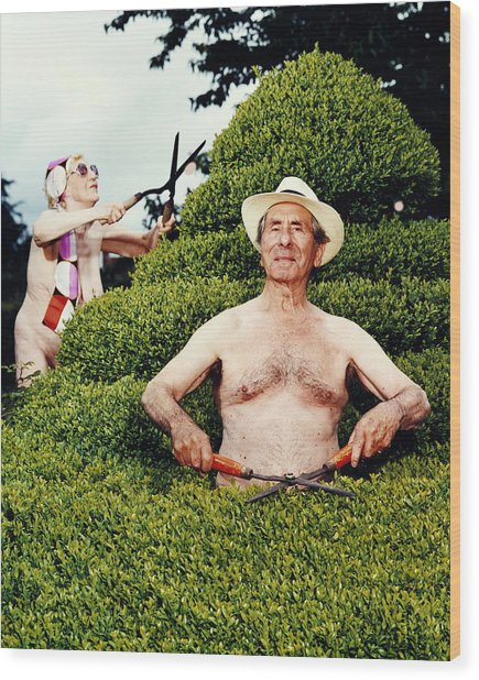Naked Mature Couple Trimming Hedge, Man Wood Print by Chris Craymer