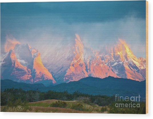 National Park Torres Del Paine In Wood Print by Kavram