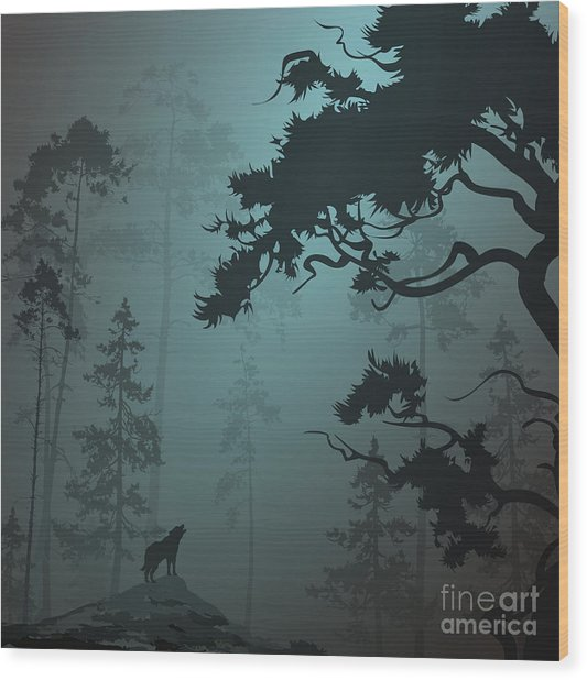 Natural Background With Pine Forest And Wood Print