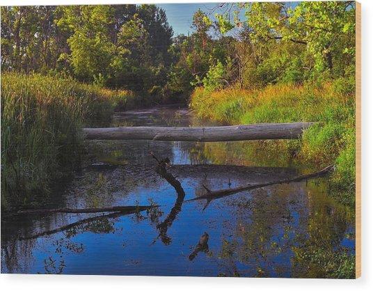 Natural Bridge Wood Print