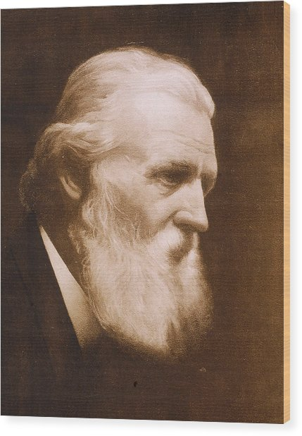 Naturalist John Muir Wood Print by Hulton Archive