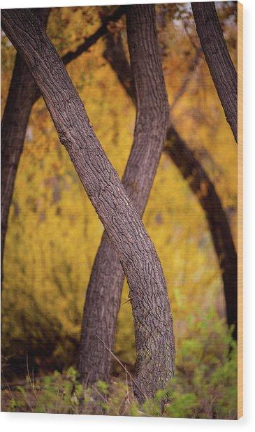 Nature's Font Wood Print