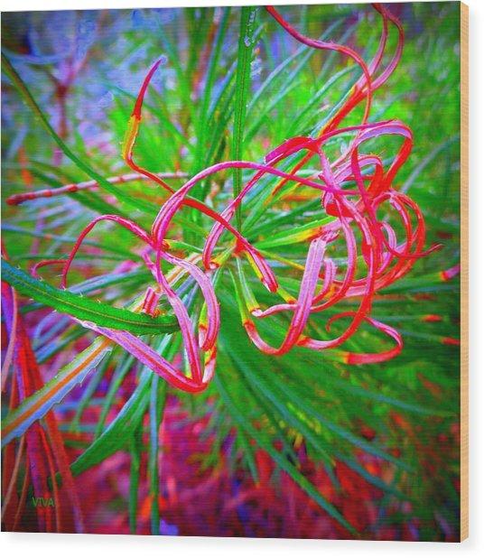 Nature's  Ribbons Wood Print