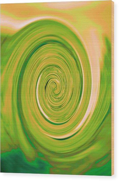 Nautilus V - Reverse Wood Print