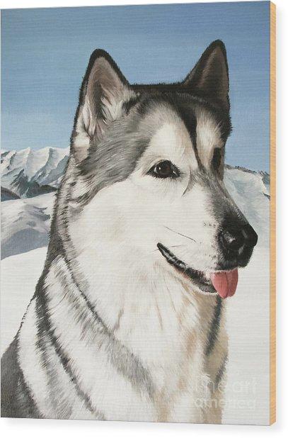 Nayuk Alaska Malamute Wood Print