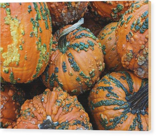 Nestled - Autumn Pumpkins Wood Print