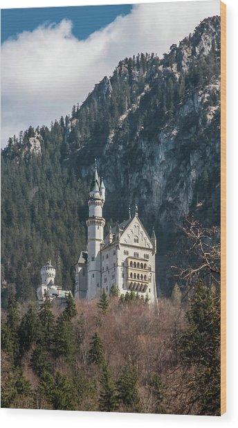 Neuschwanstein Castle On The Hill 2 Wood Print