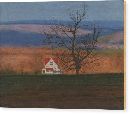 New England View  Wood Print