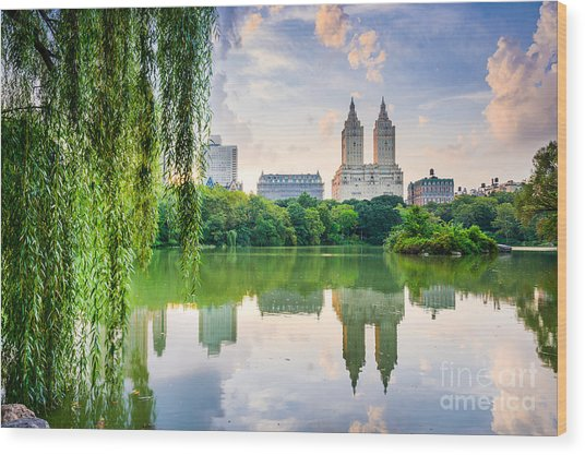 New York City, Usa At The Central Park Wood Print by Sean Pavone