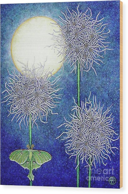 Night Garden 2 Wood Print