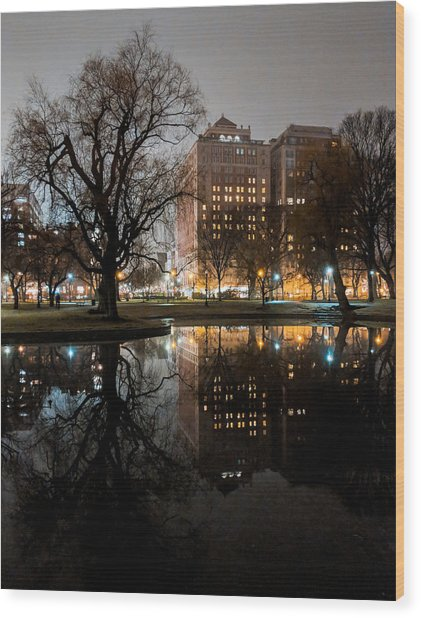 Night Reflection Wood Print