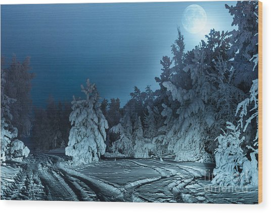 Nightly Landscape With Fir Forest Snow Wood Print