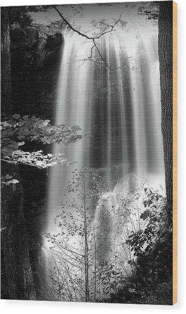 North Carolina Falls Wood Print