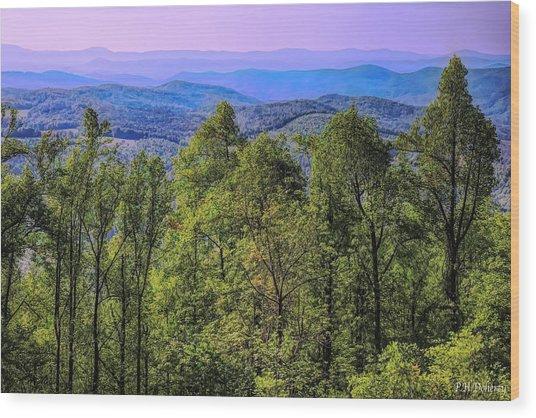 North Carolina Spring Wood Print