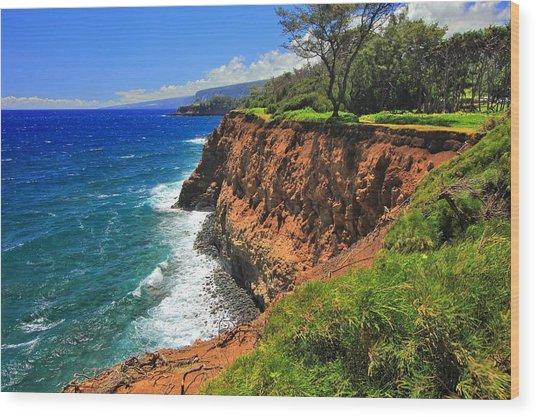 North Hawaii View Wood Print