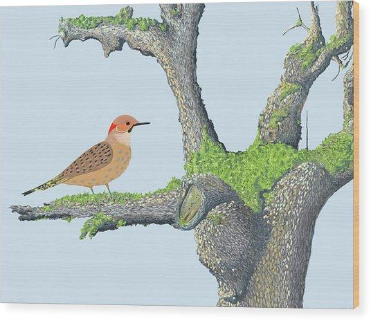 Northern Flicker Wood Print