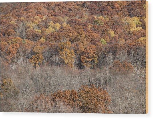 November Color - Wood Print