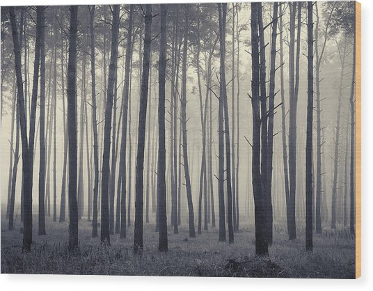 Wood Print featuring the photograph November Morning. Horytsya, 2018. by Andriy Maykovskyi