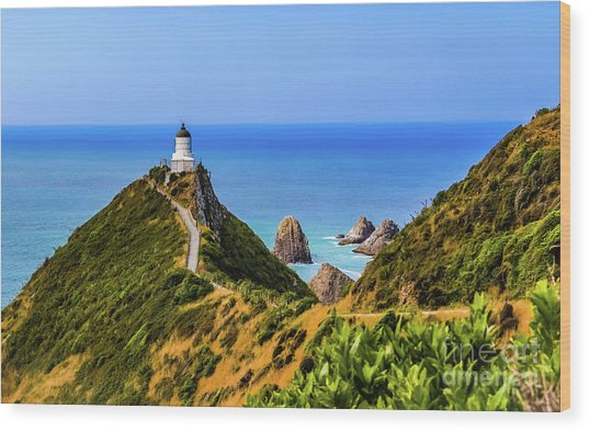 Nugget Point Lighthouse, New Zealand Wood Print