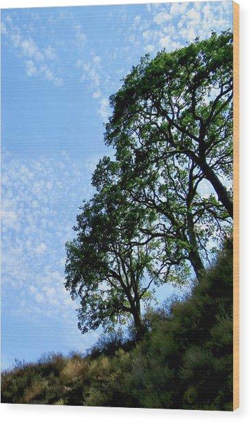 Oaks And Sky Wood Print