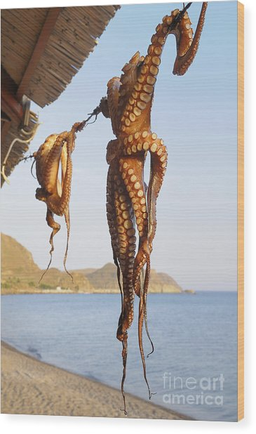 Octopus Drying In The Sun In The Greek Wood Print