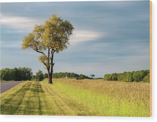 Off The Road Wood Print