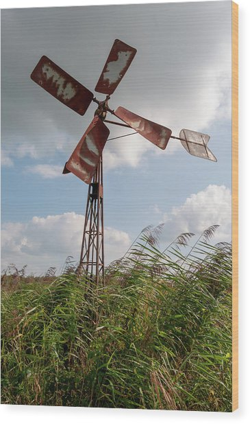 Wood Print featuring the photograph Old Rusty Windmill. by Anjo Ten Kate