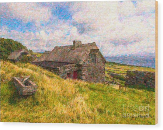 Old Scottish Farmhouse Wood Print