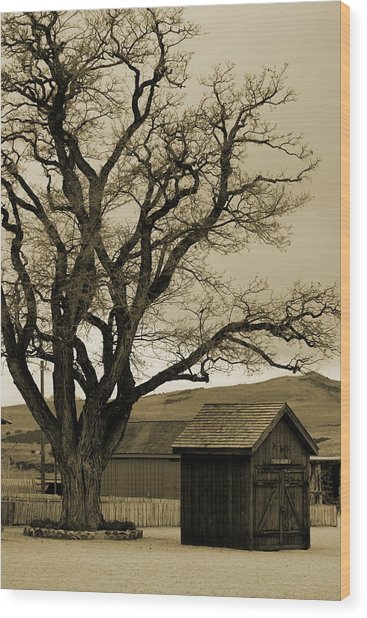 Old Shanty In Sepia Wood Print
