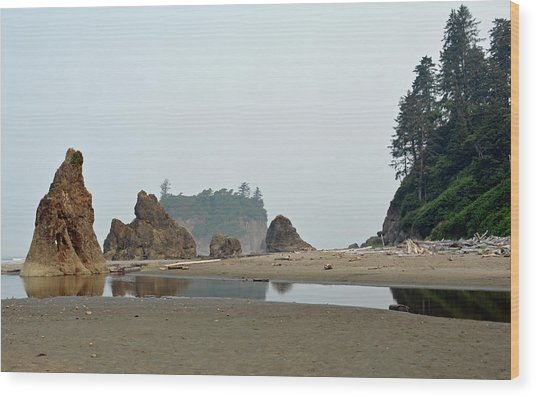 Olympic National Park Seastacks Wood Print