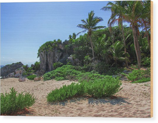 On The Coast Of Tulum Wood Print