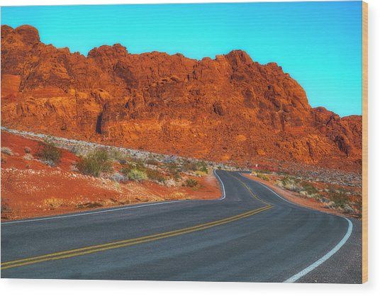 On The Road Again Wood Print by Fernando Margolles